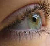 Береги зеницу ока