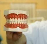 Здоровые зубы.