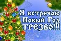Новый год трезво