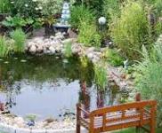 Ландшафтный дизайн бассейна и пруда