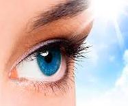 Зрение и глаза